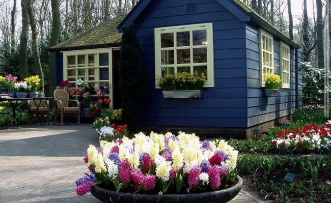Giardino fiorito un bel giardino ricolmo di fiori pps amore for Giardino fiorito
